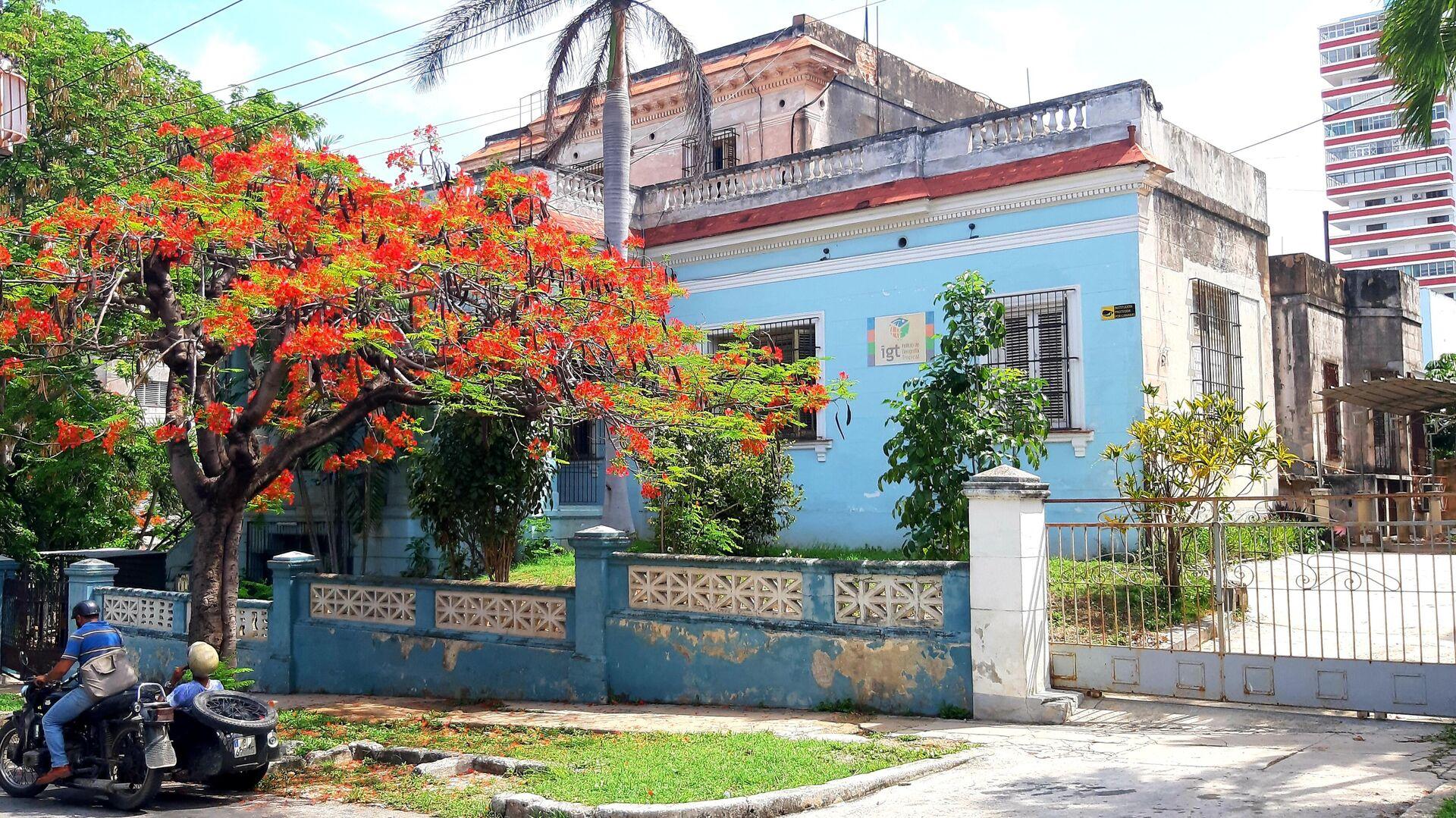Instituto de Geografía Tropical de Cuba - Sputnik Mundo, 1920, 23.06.2021
