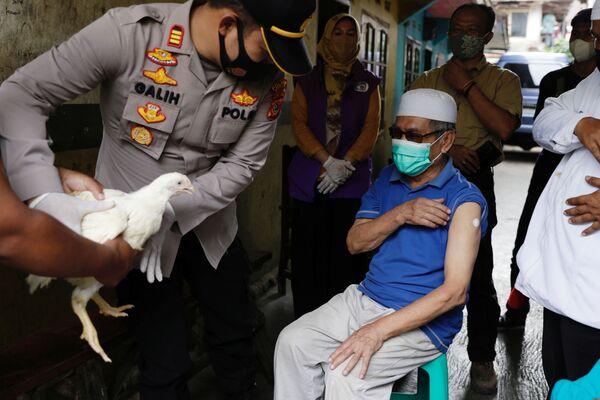 Las autoridades de la provincia de Java Occidental, en Indonesia, regalan gallinas a los vacunados de edad avanzada - Sputnik Mundo