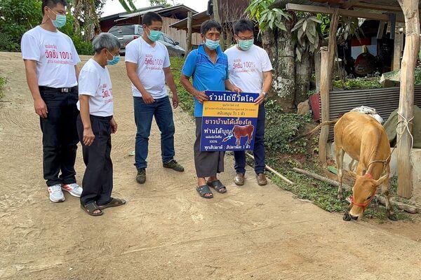 En Tailandia los vacunados pueden ganar una vaca en la lotería. - Sputnik Mundo