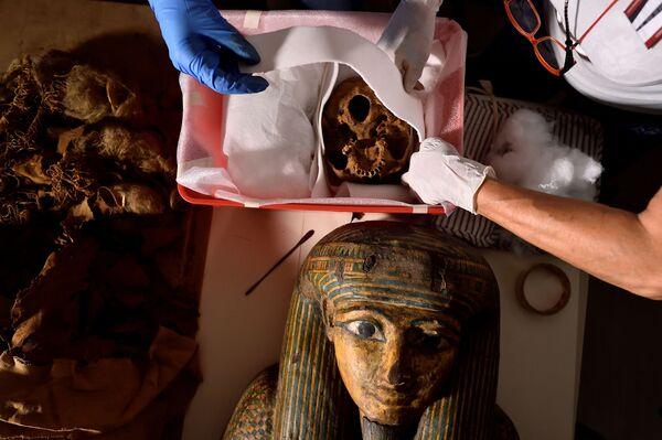 """""""Las momias son prácticamente un museo biológico, son como una cápsula del tiempo"""", opina la directora del Proyecto de Investigación de Momias, Sabina Malgora, citada por la agencia Reuters. - Sputnik Mundo"""