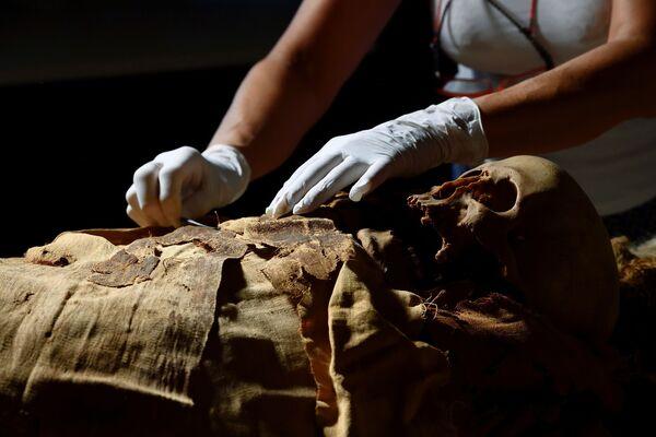 """Sabina Malgora confía en la importancia de los conocimientos sobre las enfermedades del pasado. """"Podemos estudiar el cáncer o la arterioesclerosis del pasado y esto puede ser útil para la investigación moderna"""", afirma la científica. - Sputnik Mundo"""