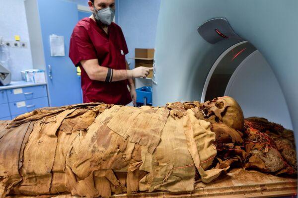 Un médico prepara una antigua momia egipcia trasladada del Museo de Bérgamo para someterla a una tomografía computarizada en el Hospital Policlínico de Milán, Italia. - Sputnik Mundo