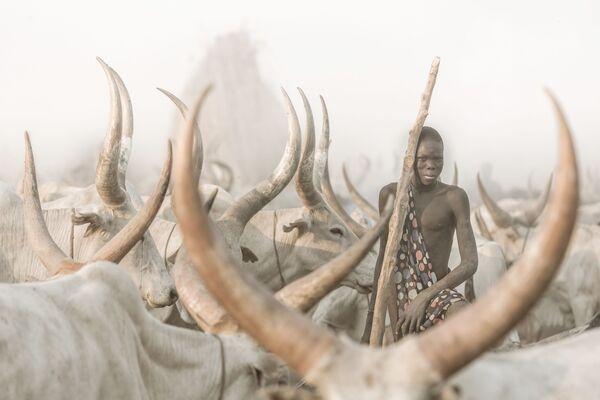 El fotógrafo suizo Josef Bürgi se llevó el premio en la categoría Environmental Portrait con su 'The Mundari Cattle Herder' ('El pastor de ganado mundari'). - Sputnik Mundo
