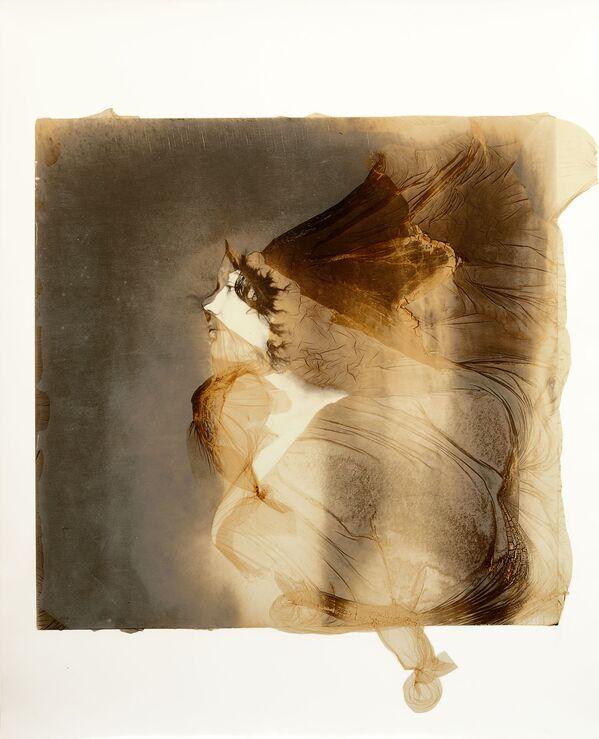 'WonderWomen', del italiano Cesare Di Liborio, quedó finalista en la categoría Character Study del concurso The International Portrait Protographer de este año.  - Sputnik Mundo