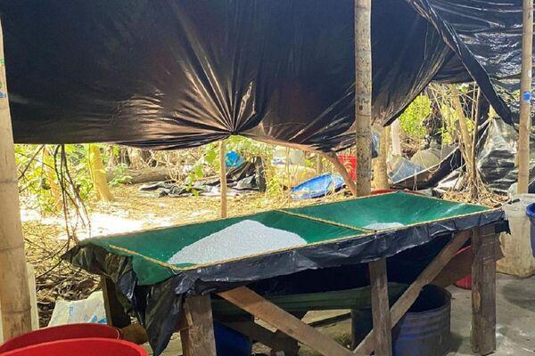 Incautación de cocaína y destrucción de laboratorios en Colombia - Sputnik Mundo