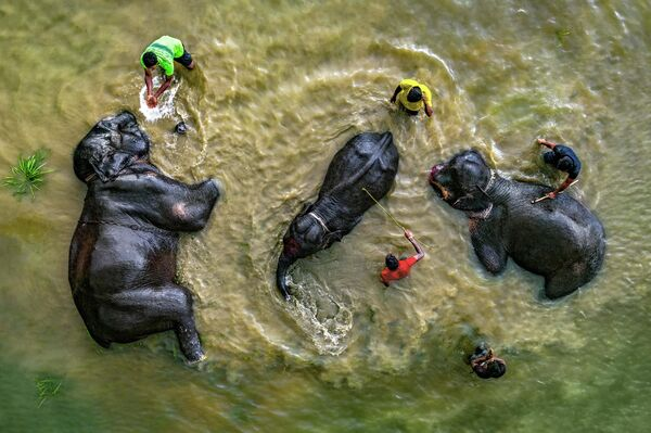 Es la hora de bañarse. Mi planeta.  Bangladesh - Sputnik Mundo