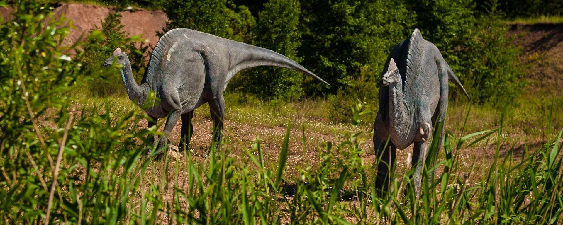 Corythosaurus (imagen referencial) - Sputnik Mundo, 1920, 08.07.2021