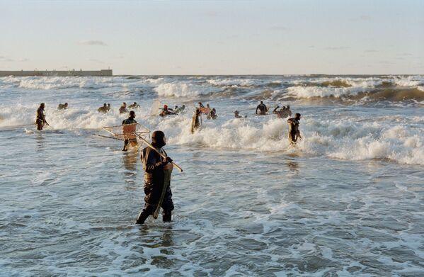 La instantánea Los cazadores de ámbar, de Guennadi Prijodko, fue tomada en la región de Kaliningrado, donde se encuentra el 90% de las reservas mundiales de ámbar. - Sputnik Mundo
