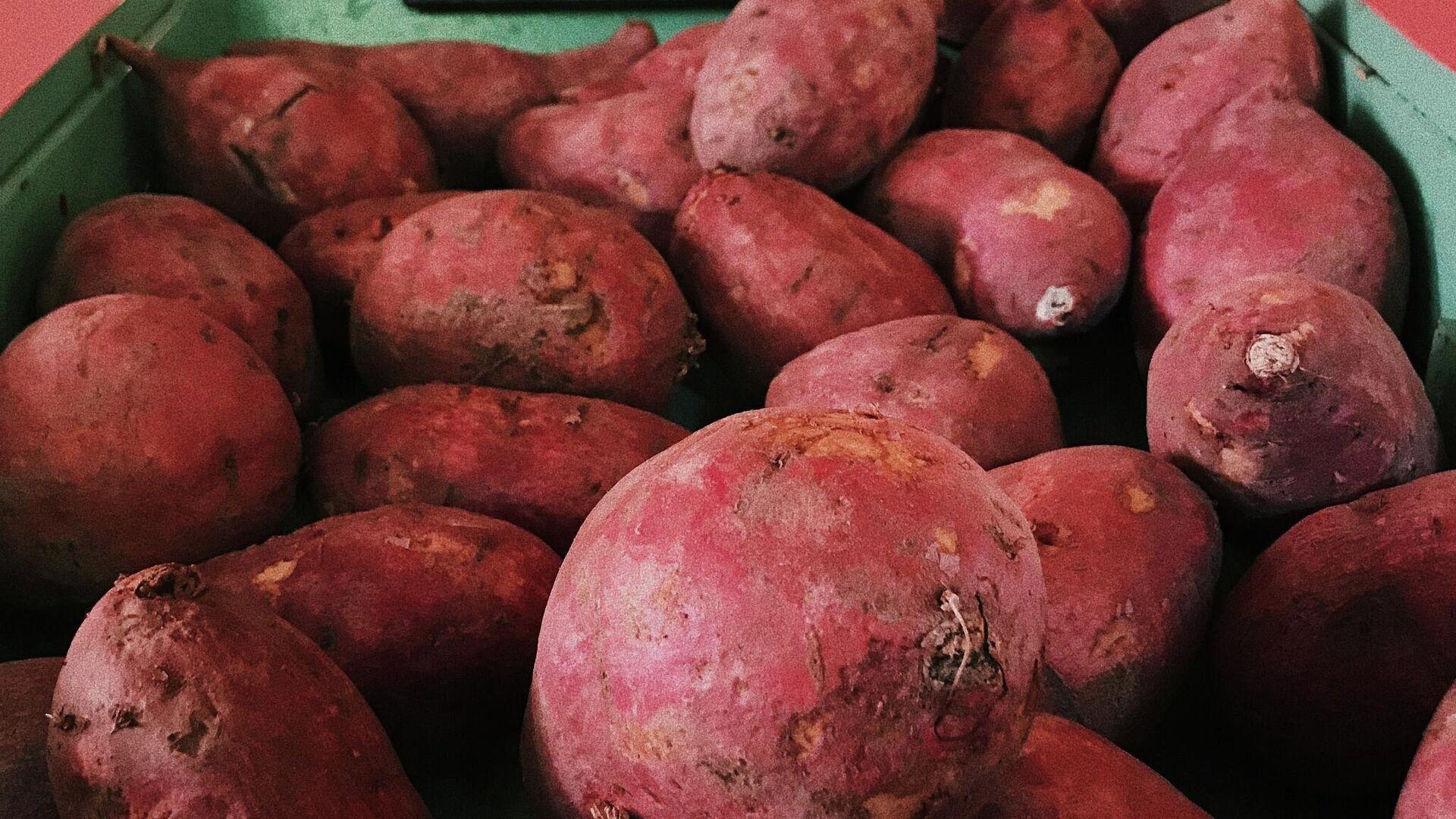 Unas batatas - Sputnik Mundo, 1920, 13.07.2021