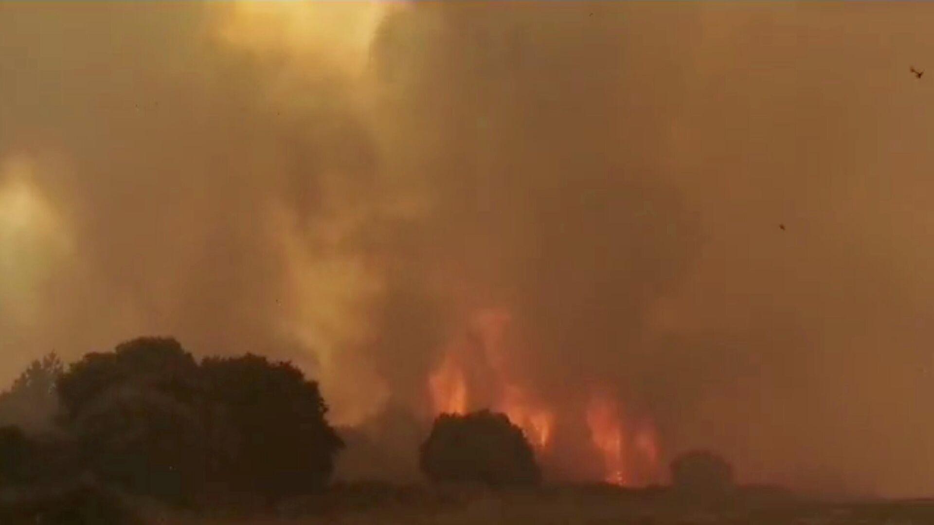 Incendios forestales en Italia - Sputnik Mundo, 1920, 26.07.2021
