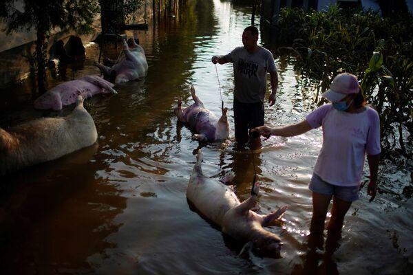 Las secuelas de una inundación en Xinxiang, provincia de Henan. - Sputnik Mundo