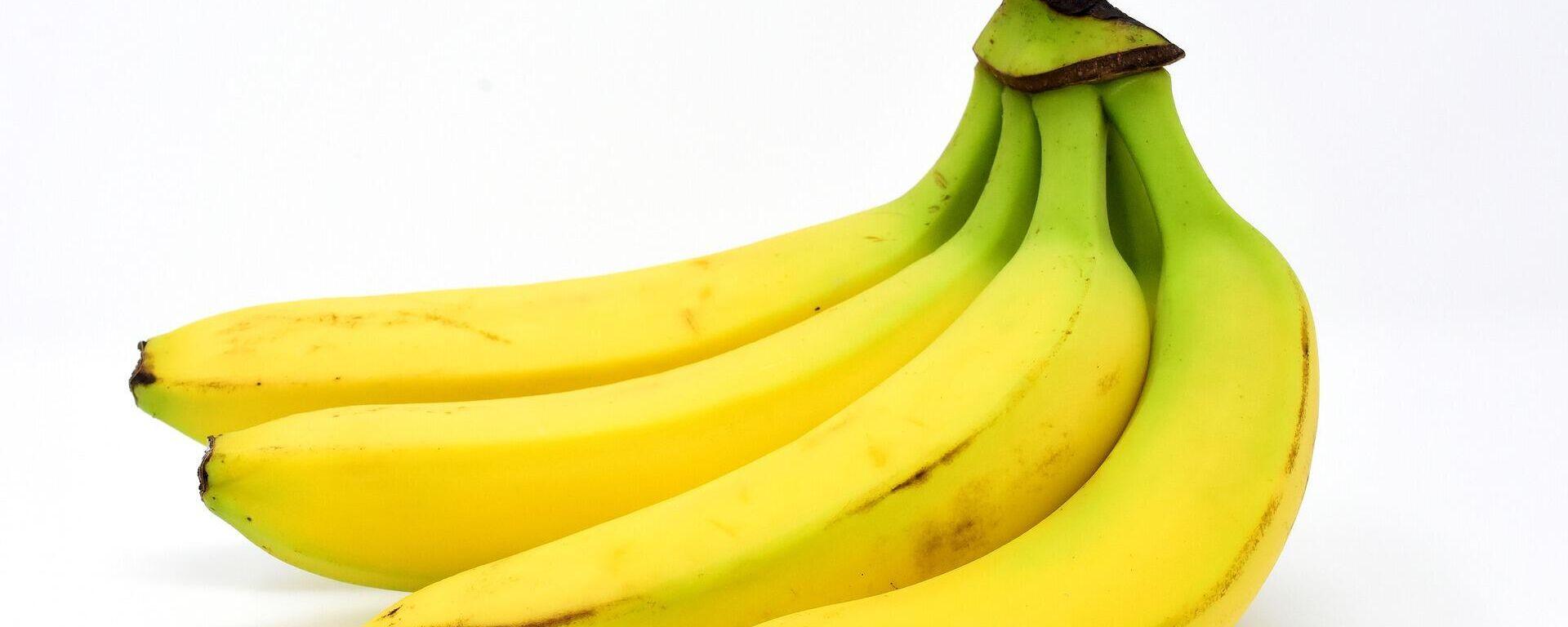 Plátanos, bananas - Sputnik Mundo, 1920, 28.07.2021
