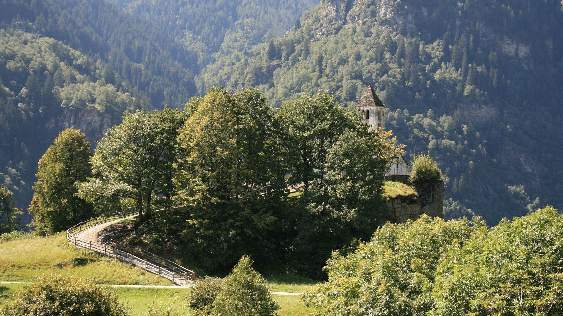 Bosque en Ticino, Suiza (archivo) - Sputnik Mundo, 1920, 29.07.2021