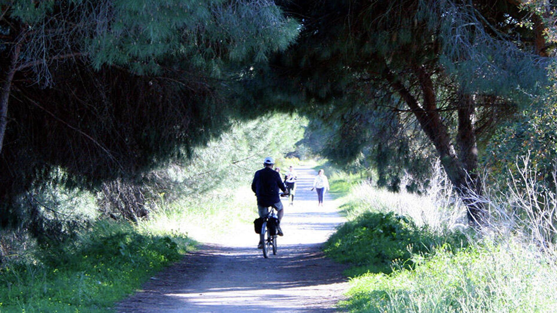 Un ciclista y una pareja de caminantes en una cicloturística de la Sierra de Huelva - Sputnik Mundo, 1920, 29.07.2021
