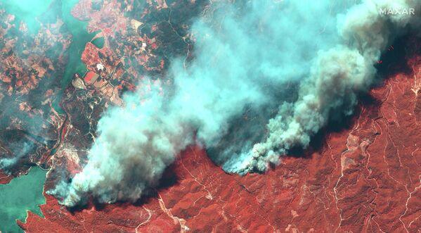 Mientras que el hemisferio sur está sufriendo temperaturas demasiado bajas que afectan las cosechas, el hemisferio norte está pasando por temperaturas récord. En la foto: una imagen satelital muestra los incendios forestales en Turquía. - Sputnik Mundo