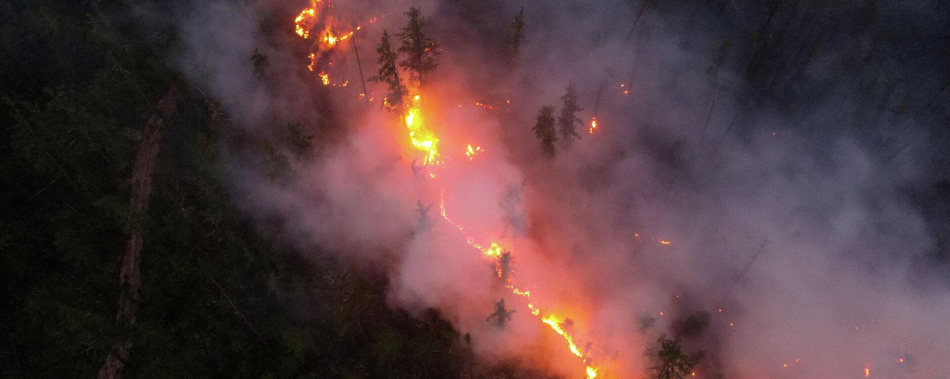 Los incendios forestales en la ciudad siberiana de Yakutia, Rusia - Sputnik Mundo, 1920, 31.07.2021
