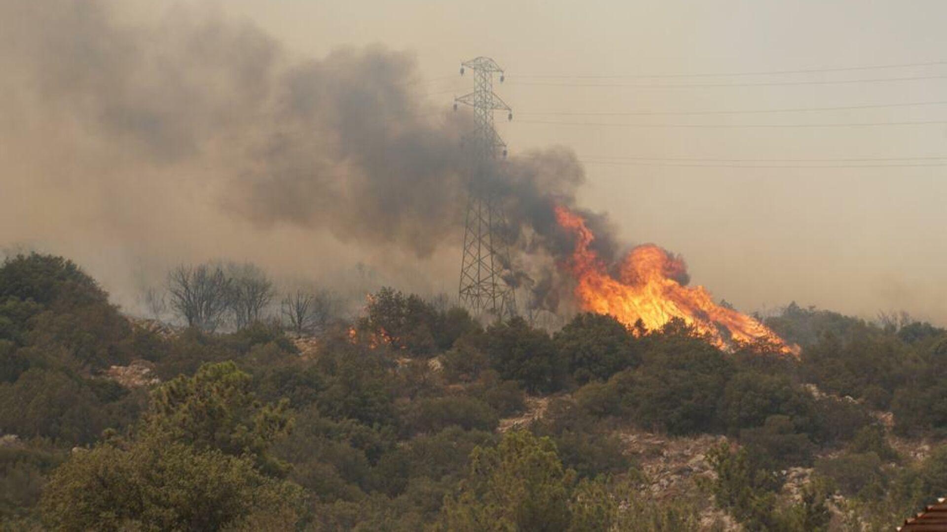 Incendios forestales en Turquía - Sputnik Mundo, 1920, 01.08.2021