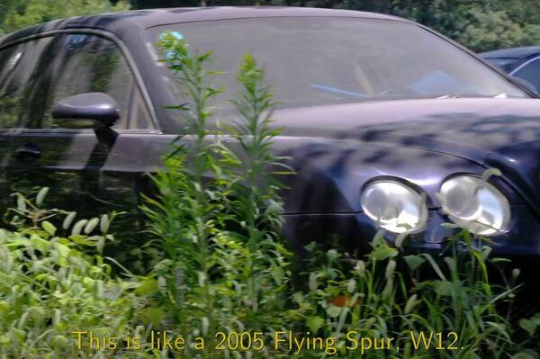 Un Bentley Flying Spur en el depósito municipal de Hangzhou - Sputnik Mundo