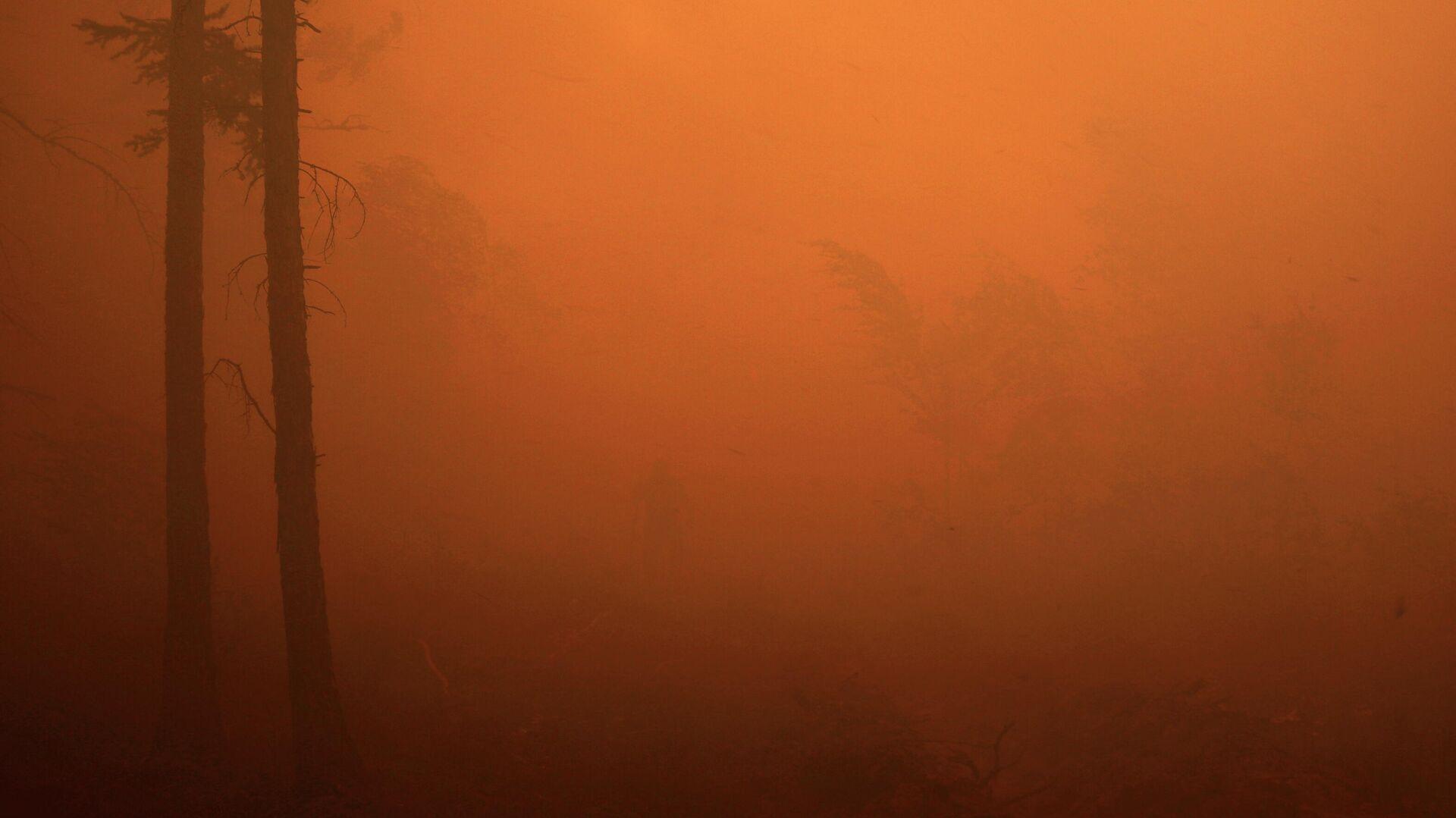 Los incendios forestales en Yakutia, Rusia - Sputnik Mundo, 1920, 03.08.2021