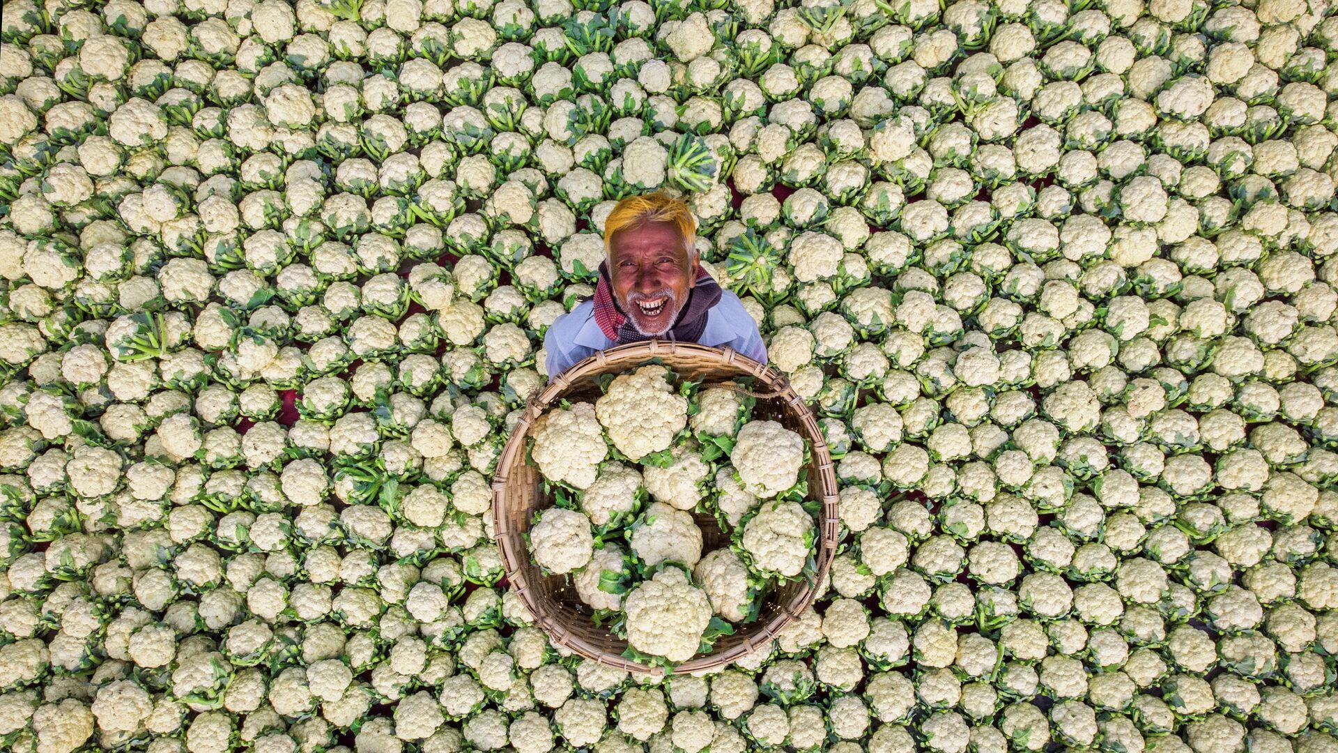 'Granjero feliz', fotografía individual de Rafid Yasar de Bangladesh, la mejor obra  del Concurso Internacional de Fotoperiodismo - Sputnik Mundo, 1920, 05.08.2021