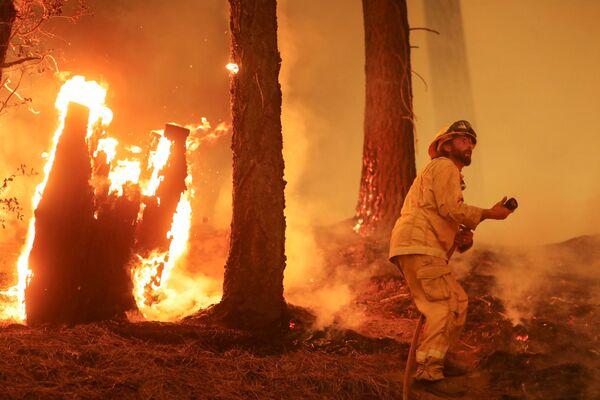 Un bombero lucha contra la propagación del fuego durante un incendio forestal cerca de Taylorsville, California (Estados Unidos) el 10 de agosto. - Sputnik Mundo
