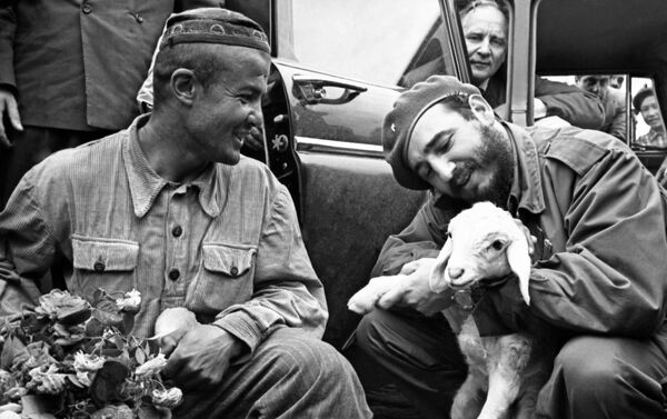 También visitó una granja de Uzbekistán. El líder cubano sorprendía con su sencillez y cercanía hacia la gente, sobre todo con los agricultores. En una granja uzbeka tomó entre sus brazos a un pequeño ternero. - Sputnik Mundo