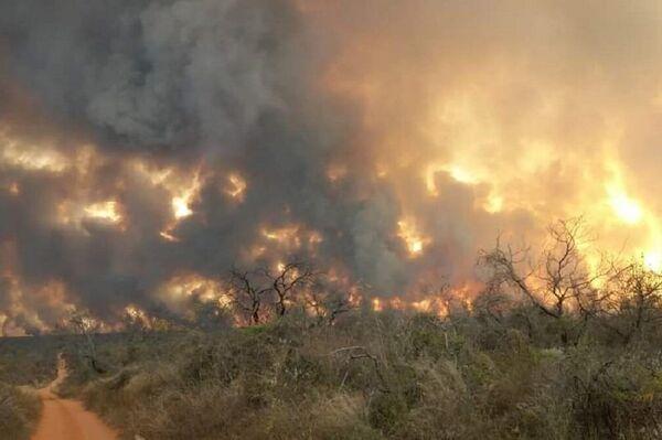 Incendios forestales en Reboré, Santa Cruz, Bolivia - Sputnik Mundo