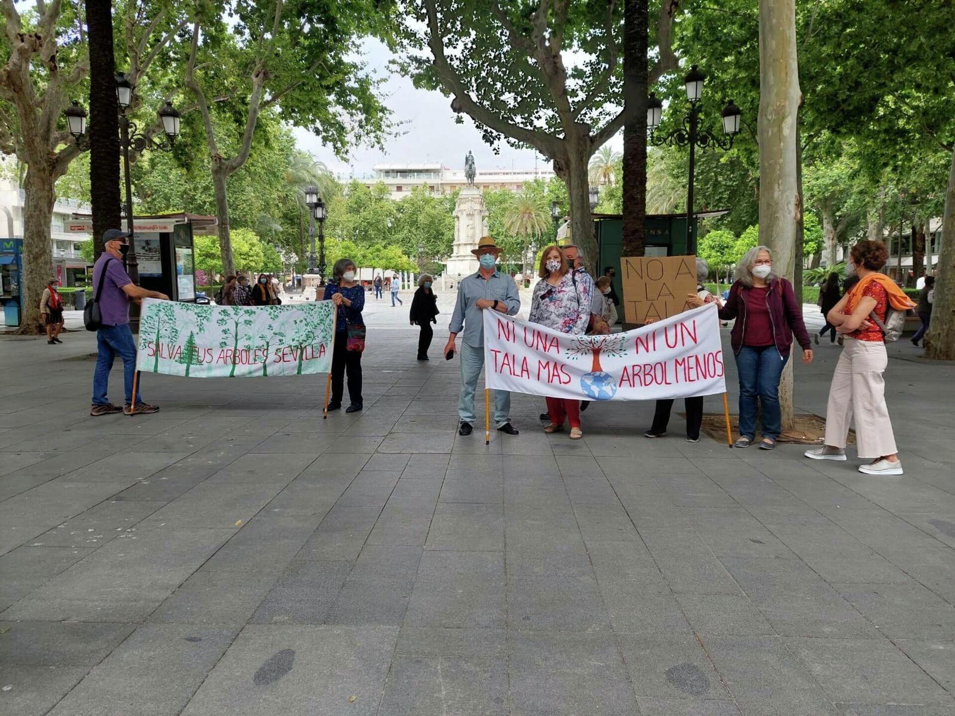 Activistas de Red Sevilla por el Clima protestan por la pérdida de árboles Fuente Facebook Red Sevilla por el Clima - Sputnik Mundo, 1920, 24.08.2021