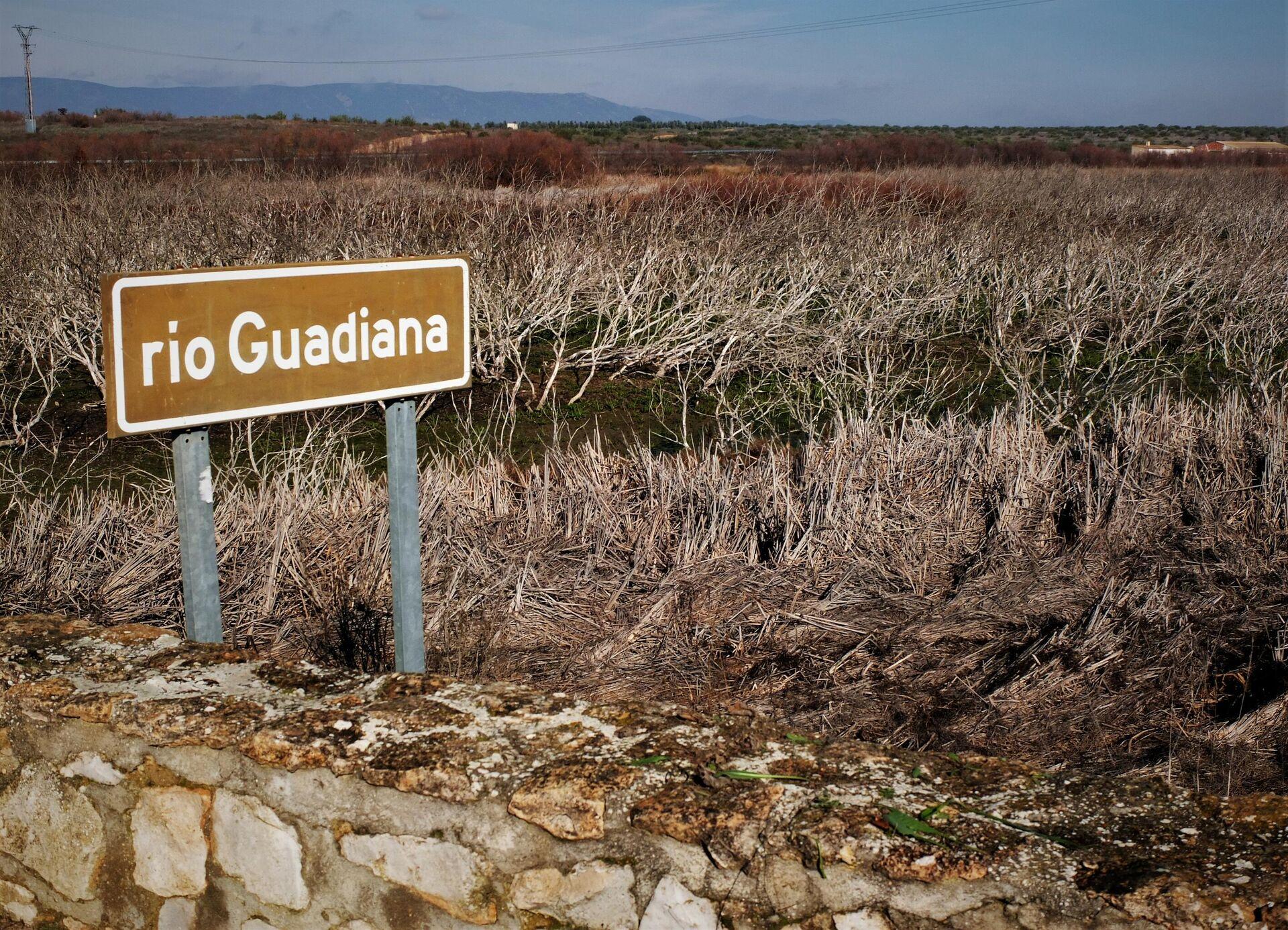 El río Guadiana, a su paso por Las Tablas de Daimiel, Parque Natural de Ciudad Real (España) - Sputnik Mundo, 1920, 27.08.2021