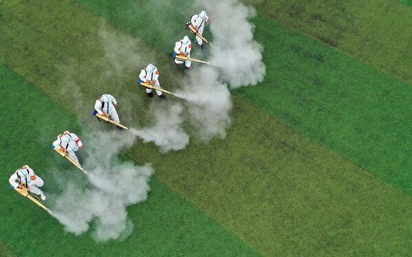 Trabajadores sanitarios desinfectan el terreno de una escuela antes del comienzo de las clases en Bozhou (China). - Sputnik Mundo
