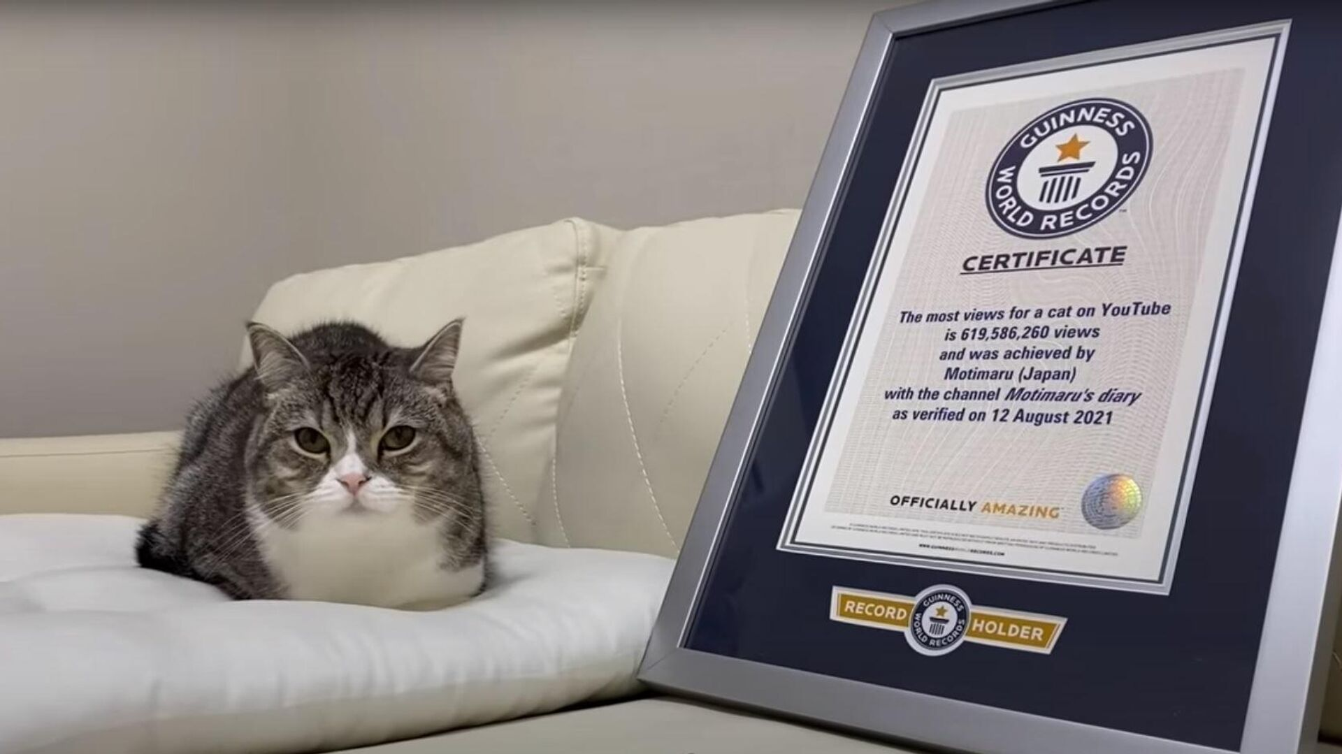 【祝】もち様がギネス世界記録™に認定されました。 - Sputnik Mundo, 1920, 08.09.2021