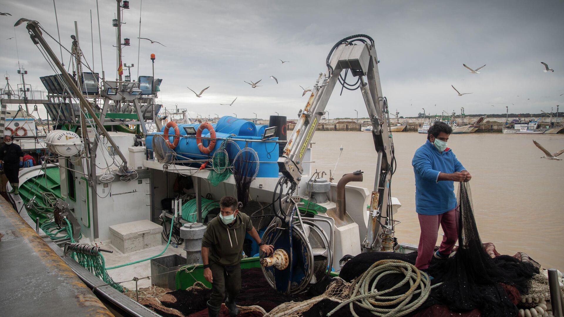 Lonja pesquera de la Cofradía de Pescadores de Sanlúcar de Barrameda, en el puerto de Bonanza - Sputnik Mundo, 1920, 08.09.2021