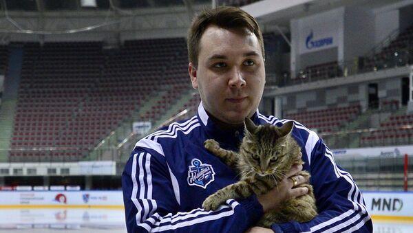 Un equipo de hockey apadrina al gato ladrón de Vladivostok - Sputnik Mundo