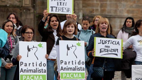 Santiago de Compostela: Concentración por Teresa y Excalibur - Sputnik Mundo