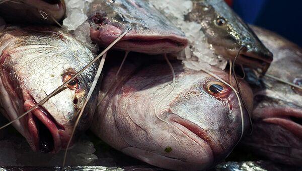Pescado - Sputnik Mundo