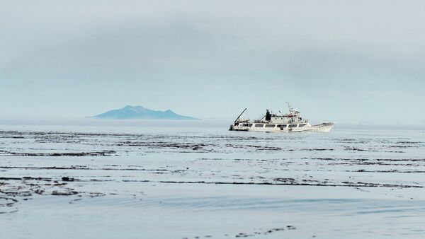 Islas Kuriles - Sputnik Mundo