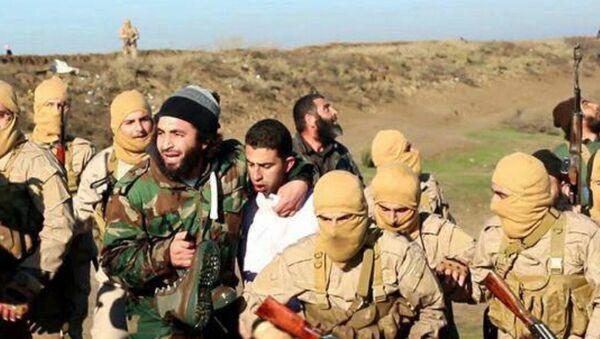 Piloto jordano capturado por miembros del grupo Estado Islámico - Sputnik Mundo