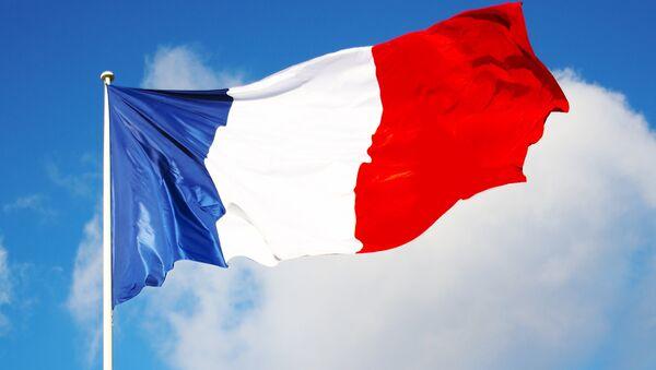 Francia reconoce el daño de las sanciones contra Rusia a la economía europea - Sputnik Mundo