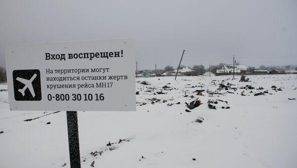 Holanda volverá a enviar expertos al lugar del siniestro del MH17 en el este de Ucrania - Sputnik Mundo