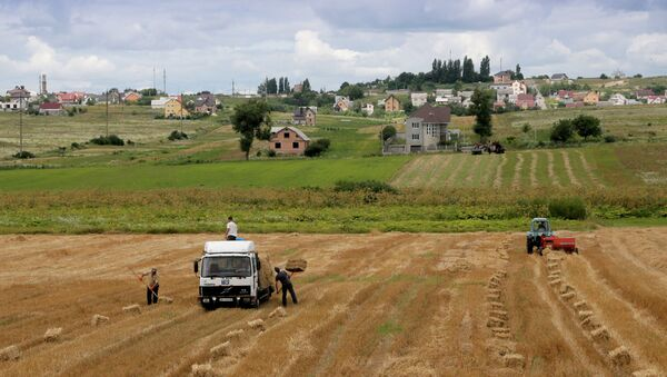 Campos de Ucrania al oeste de Kiev - Sputnik Mundo