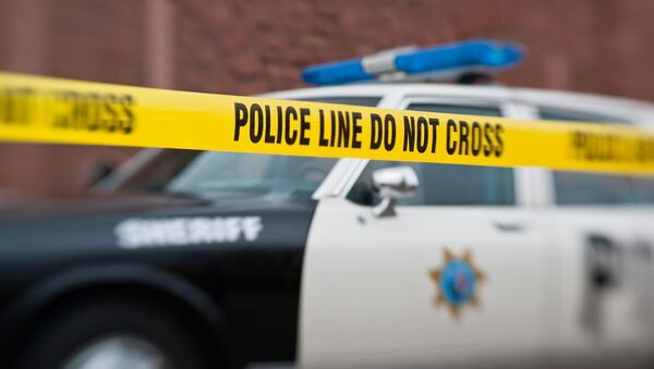 Crímenes violentos en EEUU alcanzan sus cifras más altas en veinte años - Sputnik Mundo