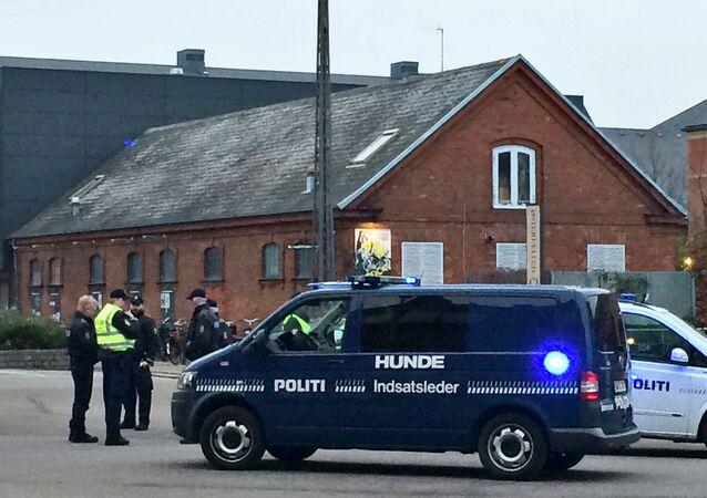 Policía danesa (archivo)