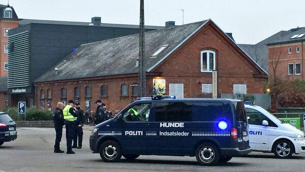 Policía danesa cerca del café cultural que acogía una charla sobre la libertad de la expresión - Sputnik Mundo