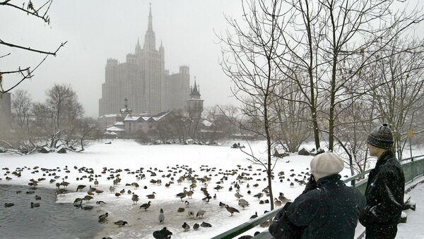 Zoológico de Moscú - Sputnik Mundo