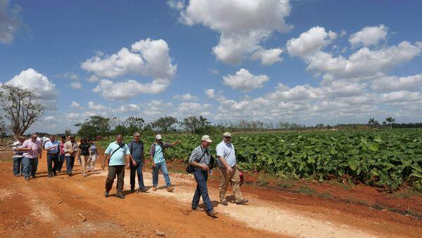 Miembros de la Coalición Agrícola de Estados Unidos para Cuba en una granja en Cuba - Sputnik Mundo