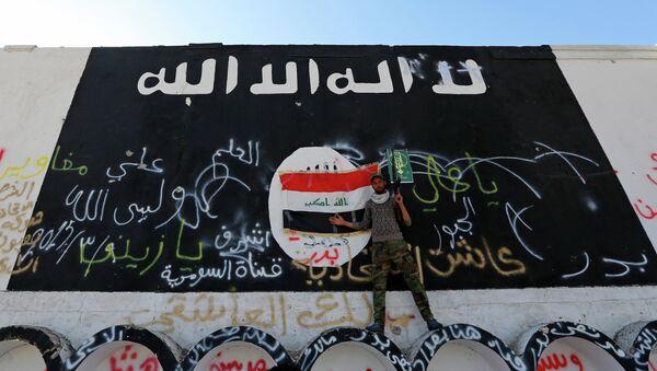 Uso de armas químicas por parte de EI en Irak no representa amenaza estratégica, afirma un experto - Sputnik Mundo