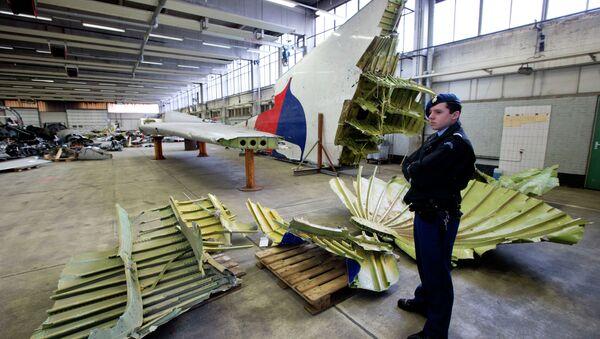 Moscú insiste en que se estudien todas las versiones de la catástrofe del MH17 - Sputnik Mundo