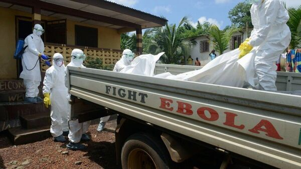 The current Ebola epidemic started in southern Guinea in late 2013 and spread to Liberia, Sierra Leone, Nigeria, and Senegal. - Sputnik Mundo