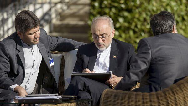 Alí Akbar Salehi, jefe de la Agencia de Energía Atómica de Irán, en Lausana - Sputnik Mundo