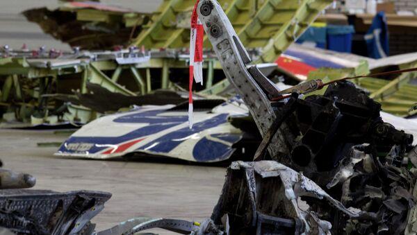 Restos del avión malasio derribado en el este de Ucrania - Sputnik Mundo